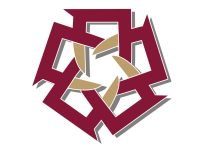 logo-american-university-of-cairo
