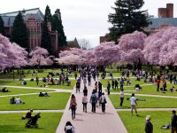 universitas-di-amerika-serikat-university-of-washington