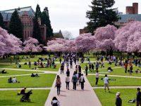 universitas-di-amerika-serikat-university-of-washington