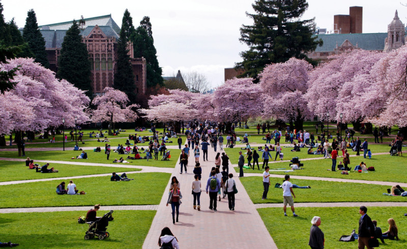 universitas di amerika serikat University of Washington