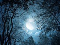 malam-musim-kemarau