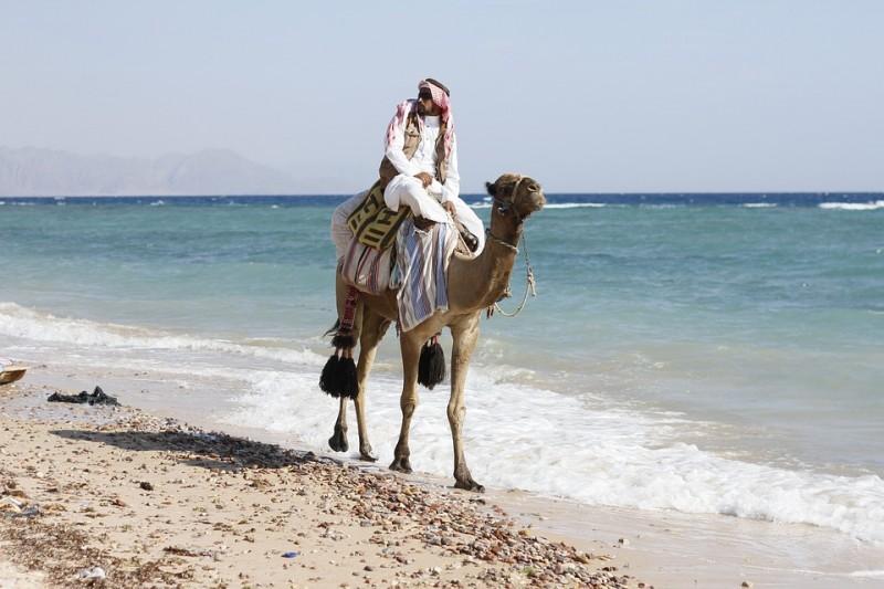 Mahasiswa Sastra Arab