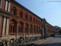Universitas Terbaik di Italia Università degli Studi di Milano